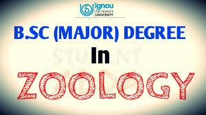 Zoology Degree Ignou B Sc Major Degree In Zoology Youtube
