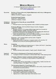 Functional Resume Stay At Home Mom Examples Stay At Home Mommemes Help Returning To Work Template Examples Mom 24