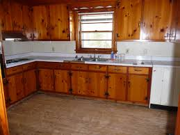 Kitchen Looks Pictures 13 Kitchen With Knotty Pine Walls On And Illustrates How