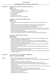 Finance Business Partner Resume Sample Senior Finance Business Partner Resume Samples Velvet Jobs 1