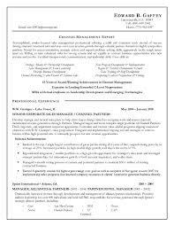 Resume Cv C Level Resume Template C Level Resume Executive Level