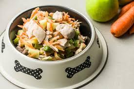 diy homemade dog food recipe