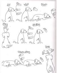 Dog Training Hand Signals Chart Dog Commands Dog Training