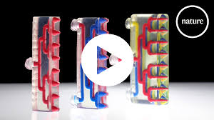 <b>New 3D printer</b> makes multi-material robots