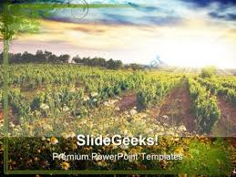 Vineyard Nature Powerpoint Templates And Powerpoint Backgrounds 0311 ...