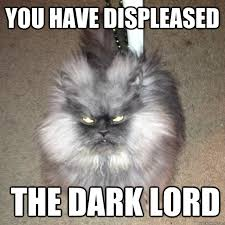 you have displeased the dark lord - Cat of Infernal Evil - quickmeme via Relatably.com