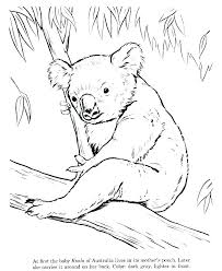 Aboriginal Coloring Pages B8065 Aboriginal Coloring Pages Free
