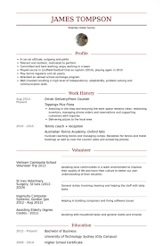 Cv Resume Sample Fascinating Driver Resume Samples VisualCV Resume Samples Database