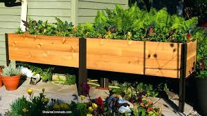 garden planter boxes elevated box in diy vegetable
