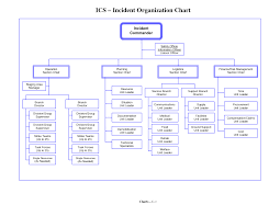 Ics Organizational Chart Best Photos of Organizational Flow Chart Template ICS 1