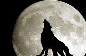 Eclissi lunare 10 gennaio 2020: come e quando osservare la ...