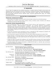 Information Technology Manager Sample Job Description Resume For Ojt