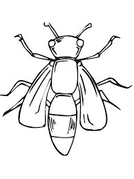 free printable bug ing pages for kids in insect