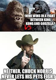 Chuck Norris Quotes Delectable A Chuck Norris Joke In 48 ComedyCemetery