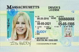 Fake Smallbusinesssoftmore Driver - License Number Us