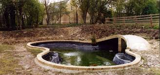 Small Picture Pond design construction and maintenance Mayfair Ponds Ltd