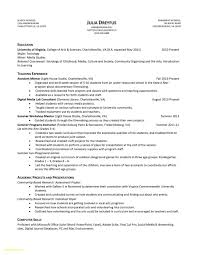 Resume Samples Free Sample Resume For Government Job Free Download Resume Samples Free 7