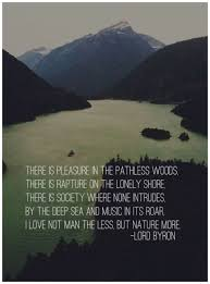 Into The Wild Quotes Mesmerizing Into The Wild Quotes With Page Numbers Into The Wild Quotes With