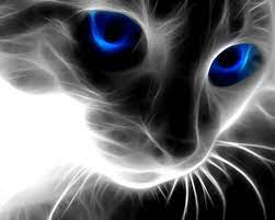 3D Cat Face Wallpapers - 1280x1024 - 195473