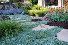 Lawnfree Front Garden  Gillian Johnston Garden DesignLawn Free Backyard