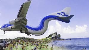 maho beach location. landing of blue bird in maho beach sint maarten sxm caribbean island - youtube location o