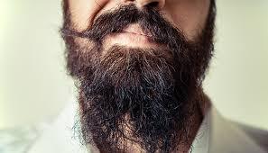 Znalezione obrazy dla zapytania beard