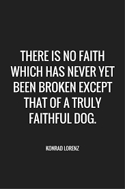 Adoption Quotes Classy 48 Of The Best Dog Inspired Quotes Puppy Leaks