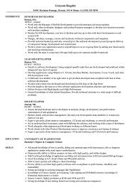 Ios Developer Resume IOS Developer Resume Samples Velvet Jobs 2