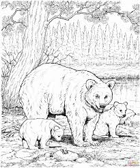 Bears Coloring Pages Are Great For