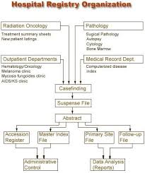 Hematology Flow Chart Flowchart Of The Organization Of Hospital Registries