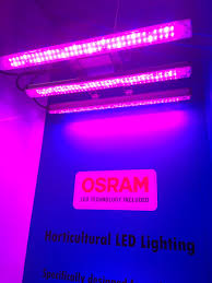 Horticultural Lighting Uk Bss Led Limited Bssledlimited Twitter