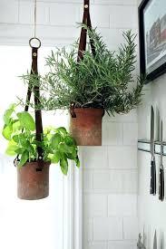 wall herb garden kitchen herb planter medium size of herb planter wall herb garden outdoor how to make an kitchen herb planter indoor wall