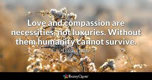 Dalai Lama Quotes On Love Custom Love And Compassion Are Necessities Not Luxuries Without Them