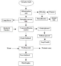 Biodiesel Production Chart Tnau Agritech Portal Bio Fuels
