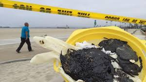 What are the tar balls that are closing beaches in L.A. County? - Los  Angeles Times