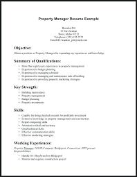 Example Of Skills To Put On A Resume Beauteous Good Summary Of Qualifications For Resume Examples Skills To Put On