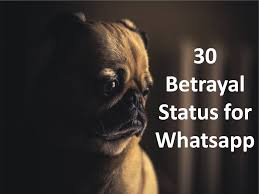 Bitter Heartbroken Whatsapp Profiles