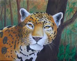 tropical jaguar