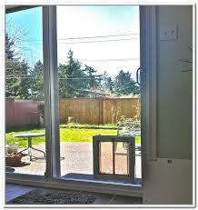 image of cat door insert for sliding glass doors and pet door for sliding glass