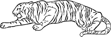 Coloriage Tigre Dessin Imprimer Sur Coloriages Info