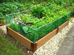 raised garden beds with fence raised garden bed rabbit fence raised flower bed next to fence