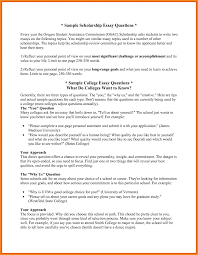 Example Of Scholarship Essay 027 Research Paper Example Of High School Student