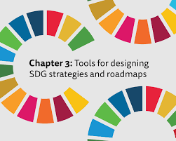 Birth Plan Ideas And Strategies Chapter 3 Tools For Designing Sdg Strategies And Roadmaps