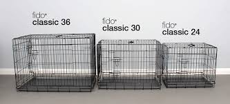 Kong Crate Size Chart Choosing The Right Sized Dog Crate Crate Training Dogs