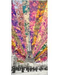 funny beach towels. Vintage Paris - Bianca Green Beach Towel Funny Towels