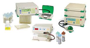 Electroporation Life Science Research Bio Rad