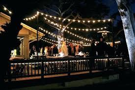 solar bulb string lights plusfoamco