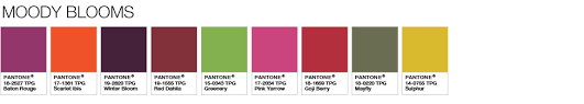Pantone Colour Chart Pink Color Of The Year 2017 Pantone Color Of The Year 2017