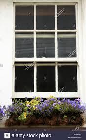 Haus Fenster Balkonblumen Haus Fassade Altbau Holzfenster