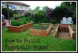 box garden. Contemporary Garden Post Image For Building Vegetable Boxes A Greek Garden With Box R